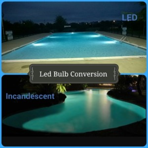 Dallas Residential Pools 1
